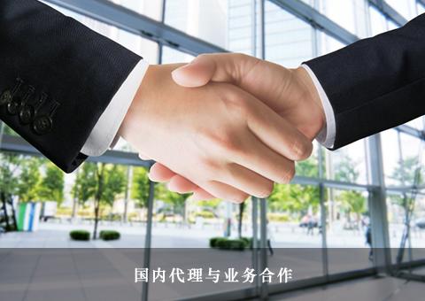 国内代理与业务合作